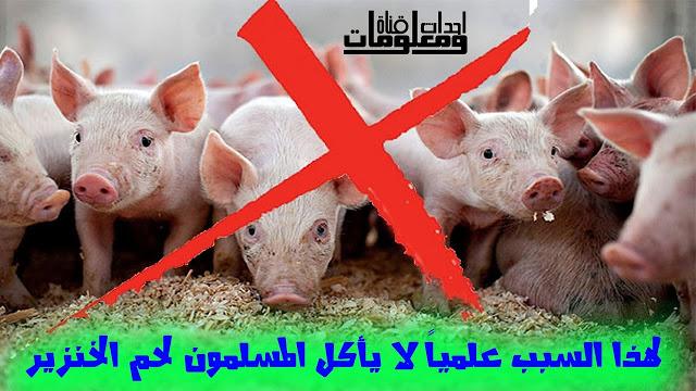 Photo of لماذا لا يأكل المسلمين لحم الخنزير ؟ مترجم باللغة العربية والانكليزية