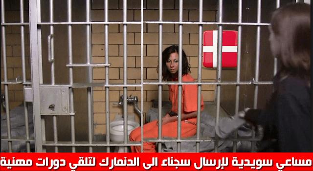 Photo of مساعي سويدية لإرسال سجناء الى الدنمارك لتلقي دورات مهنية
