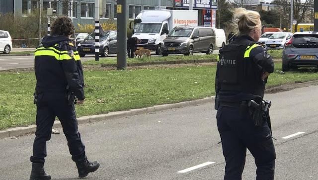 Photo of مقتل 3 أشخاص بهجوم في هولندا والشرطة تطارد المشتبه فيه