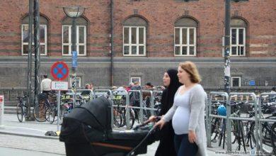 Photo of دعوة لمسلمي الدنمارك لالتزام الضوابط خشية انتشار عدوى كورونا برمضان