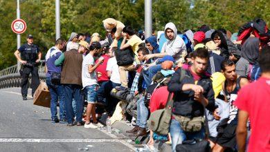 صورة خلل بسياسة الدمج أدت لانخراط أقل من نصف اللاجئين في الدنمارك بسوق العمل